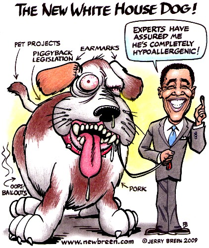 Progressive cartoons of obama
